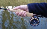 Maniform fishing rod